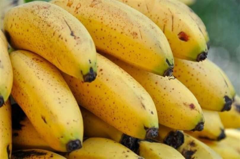 Banana Ouro